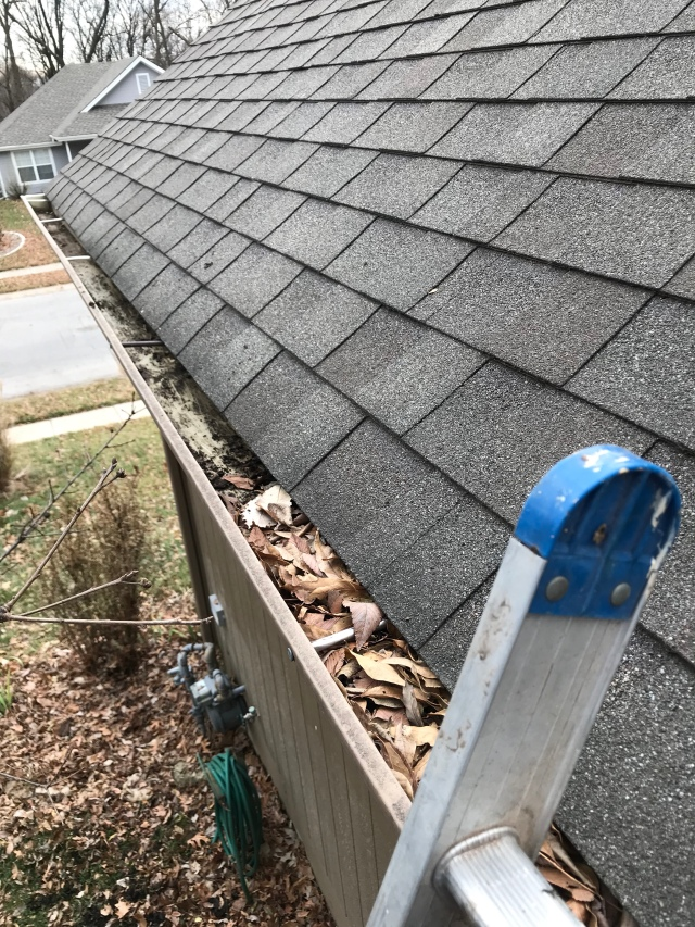 cleaning the gutters on the one-story side of the house