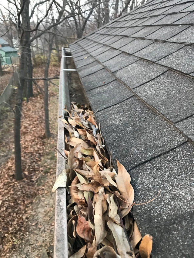 cleaning the gutters on the two-story side of the house